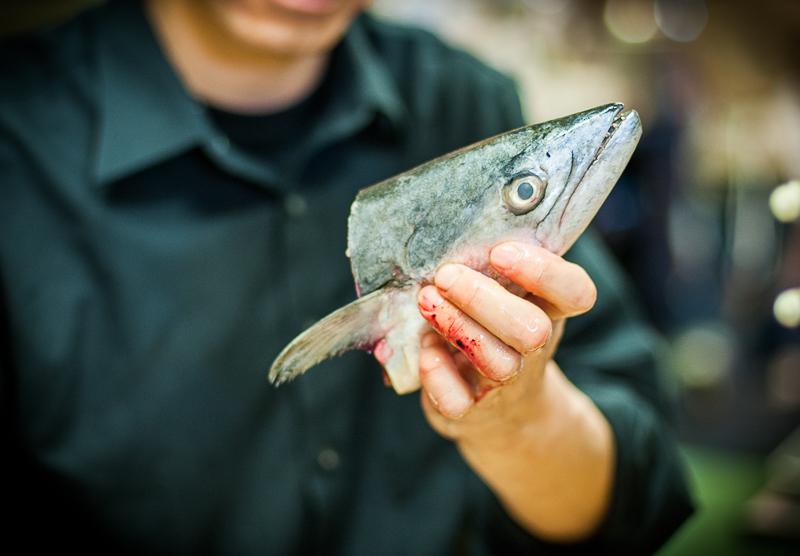 aaron-ingrao-Kunis-Sushi-fish-Buffalo-9064