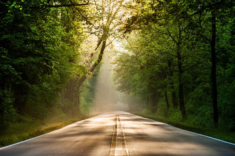 aaron-ingrao-pisgah-forest-brevard-highway-276